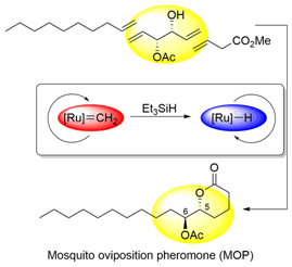 entropy-driven ring-opening olefin metathesis polymerization of macrocycles Synthesis of macrocyclic natural products by catalyst-controlled stereoselective ring-closing metathesis  olefin metathesis  by ring-opening/cross.
